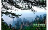 【純(chun)玩獨(du)立成團線路1】張家界、袁家界、天子山、寶峰(feng)湖(hu)/黃龍洞二晚三日